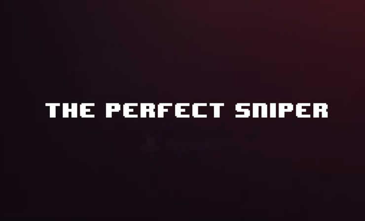 The Perfect Sniper – Trophäen Trophies Leitfaden
