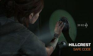 Tlou2 Hillcrest Safe