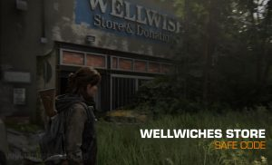 Wellwishes Store Safe Code