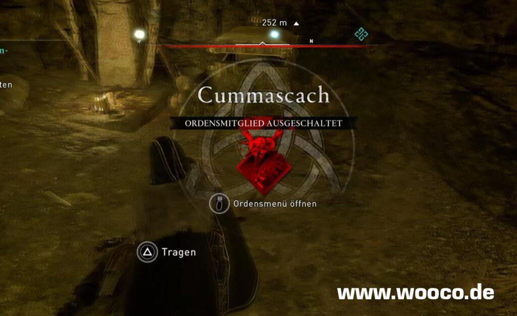 Cummascach Die Esche Fundort