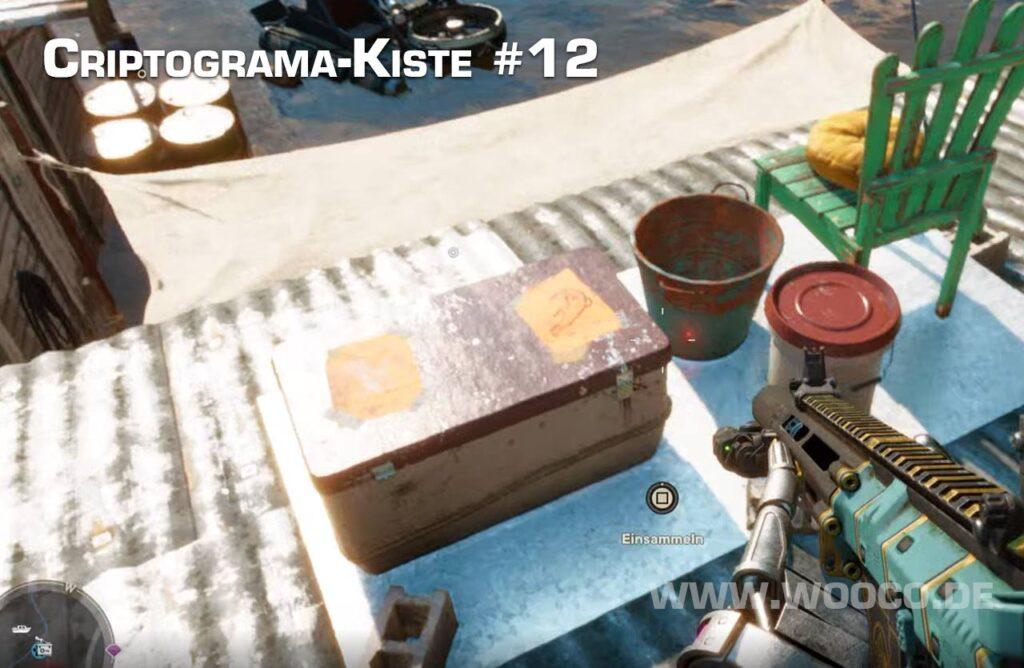 Criptograma Kiste 12